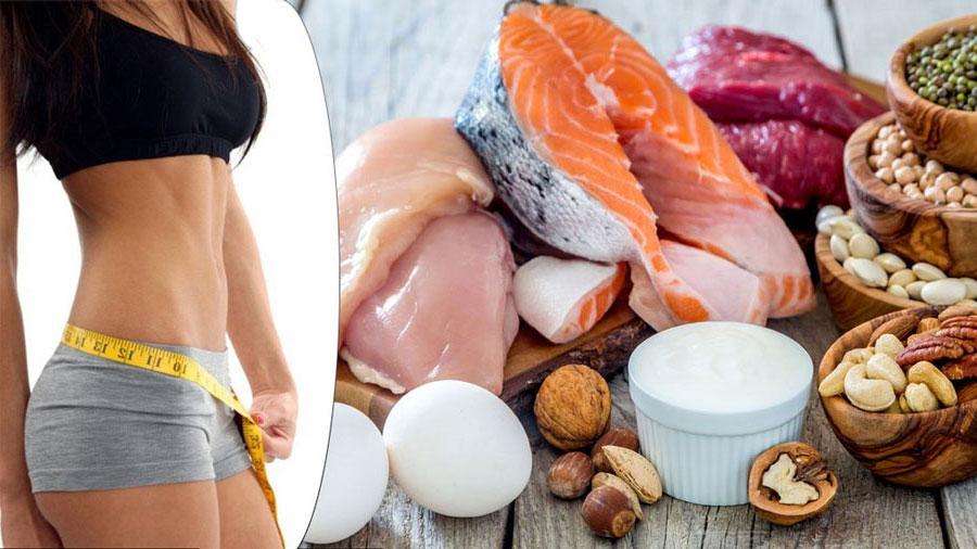 Dietas de aporte proteico alto