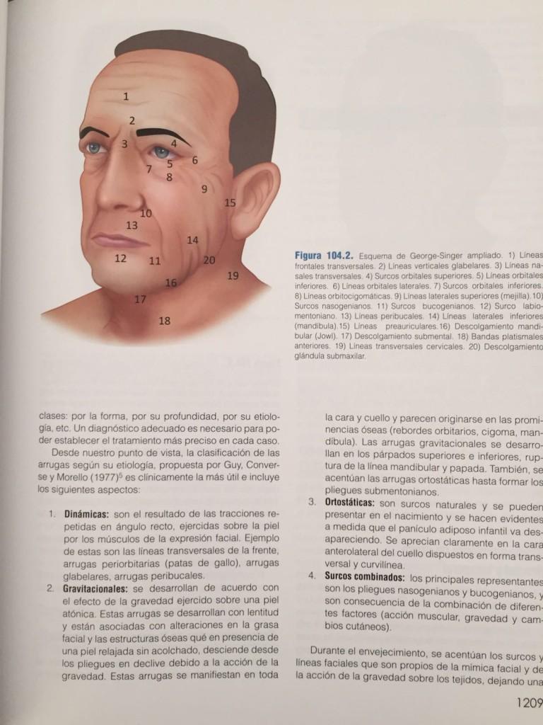 capítulo envejecimiento facial global -coiffman-2