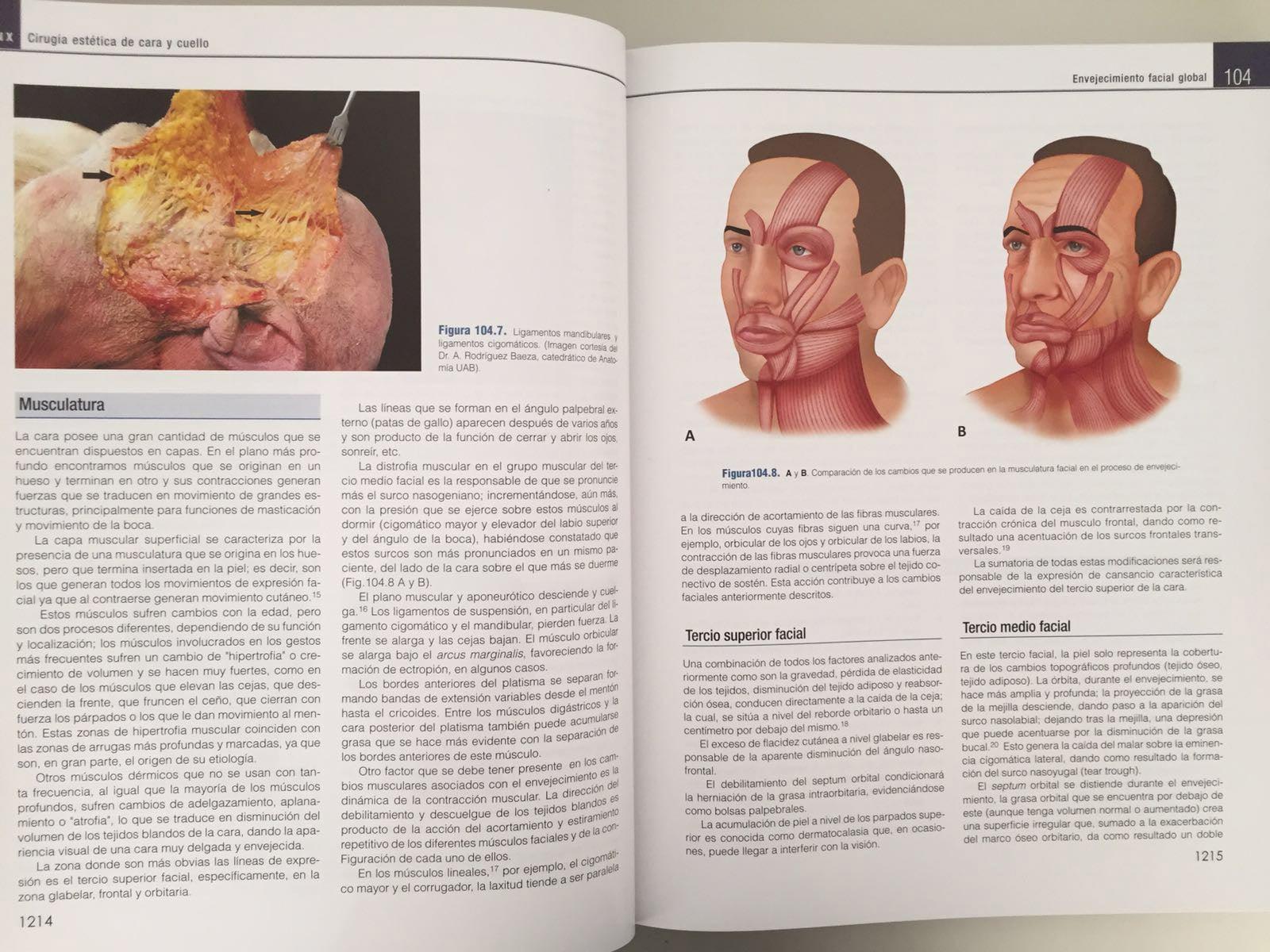 capítulo envejecimiento facial global, coiffman -4
