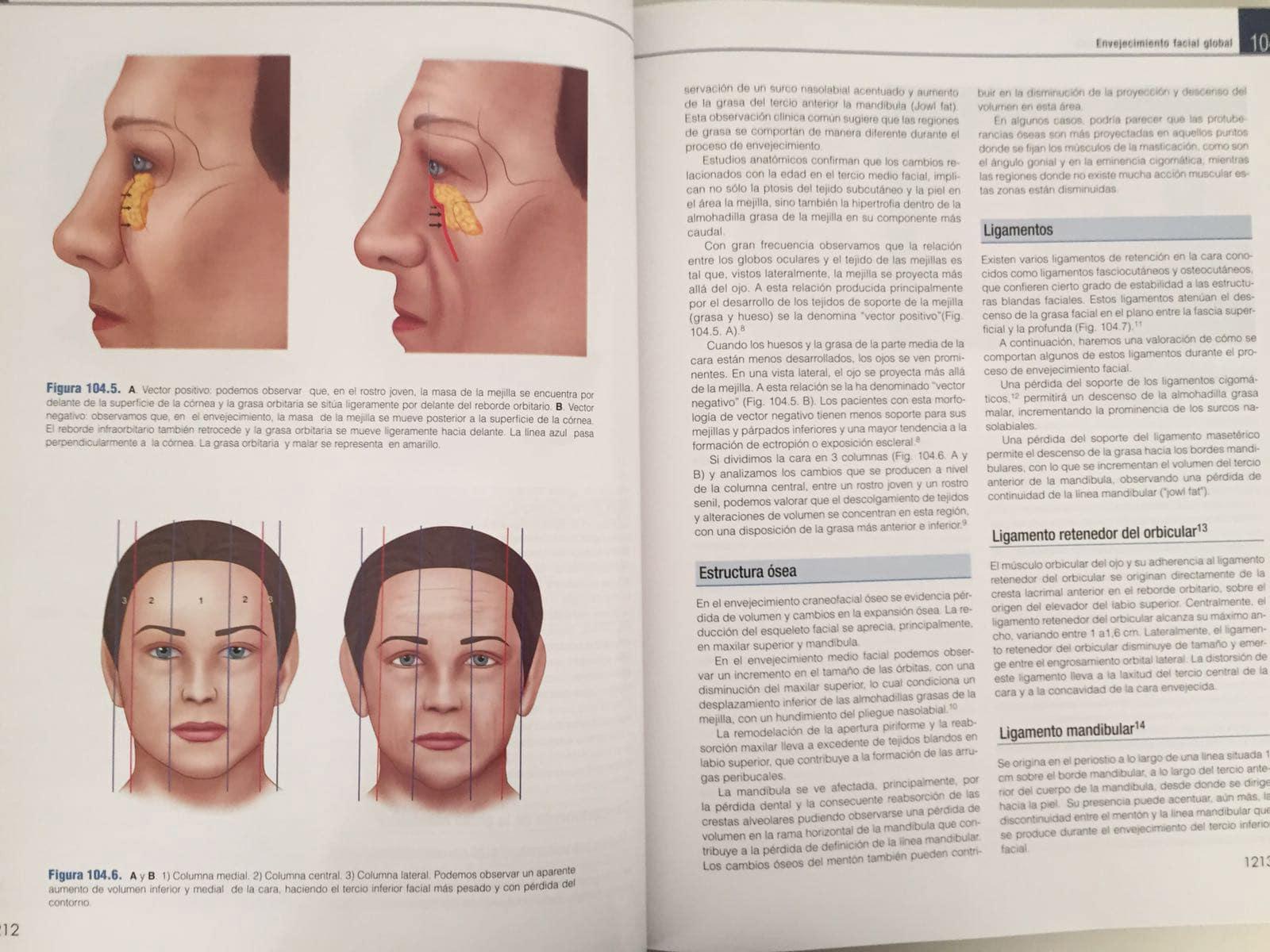 envejecimiento facial global, coiffman-3