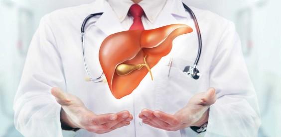 Hígado graso, la enfermedad silenciosa